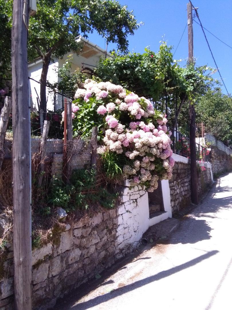 Το Χωριό της Καστανιάς στα Άγραφα - Καρδίτσα